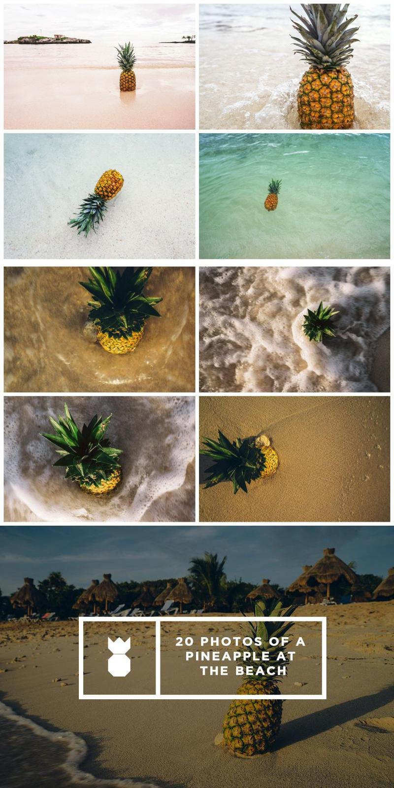 Pineapple's Day at the Beach